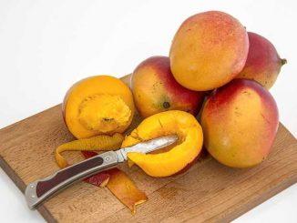 potere del mango africano