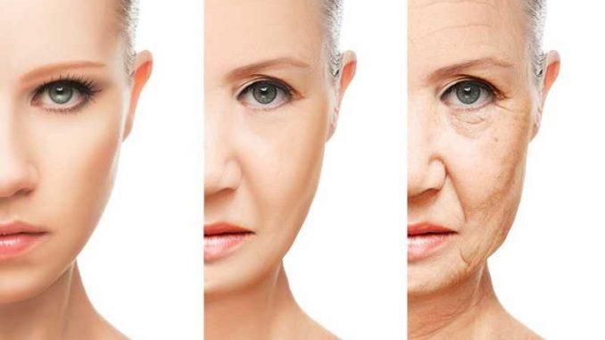 rallentare invecchiamento pelle